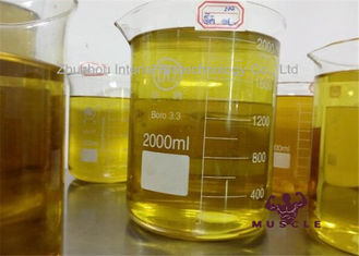 중국 Injectable Anabolic Masteron 200 Cutting Cycle Steroids Drostanolone Enanthate 200mg/ml yellow oil 협력 업체