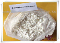 중국 Boldenone Cypionate White Powder Pharmaceutical Boldenone Steroids 106505-90-2 For Anti Aging Gaining Cut 공장