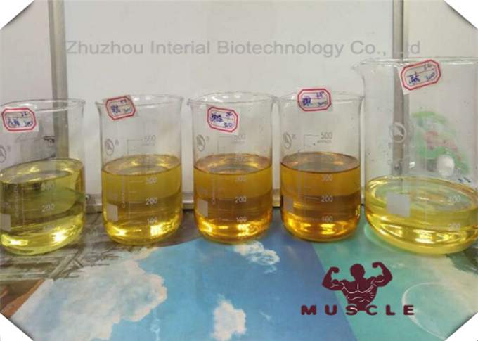 Yellow Liquid Primobolan Depot 100 Injectable Anabolic Steroids Methenolone Enanthate CAS 303-42-4