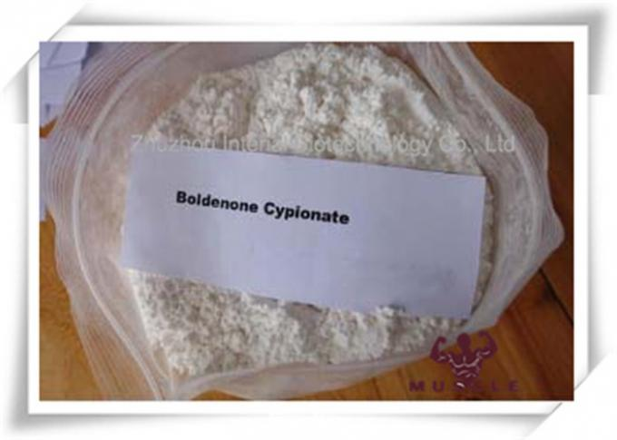 Boldenone Cypionate White Powder Pharmaceutical Boldenone Steroids 106505-90-2 For Anti Aging Gaining Cut