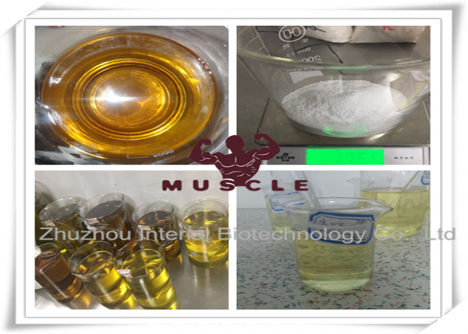 Legal Injectable Anabolic Steroids Primobolan Enanthate / Primo 200 For Bodybuiling Depot